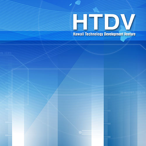 HTDV Branding and Digital Marketing Campaign