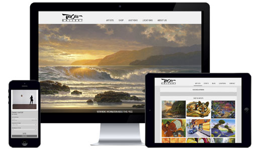 Website Design Sample - Tabora