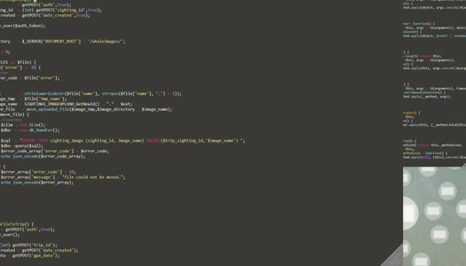 Website Development, Programming Code